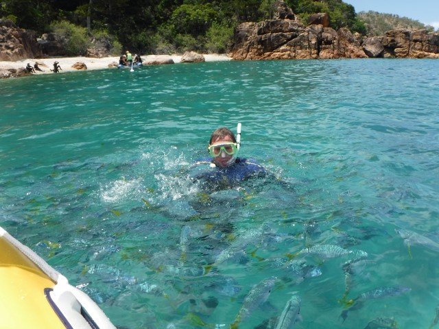 swimming-with-fish on the reef